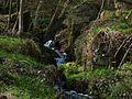 Údolí Klopotského potoka, Gelobtbachtal - panoramio (12).jpg