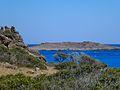 Εσωτερικό Νήσου Χρυσής - Chrysi Island Inland 02.jpg