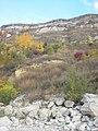 Берег Дністра напроти Старої Ушиці поблизу Кормані - panoramio.jpg