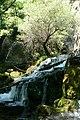 Водопад Райски кът край Вършец, Врачански Балкан 3.jpg