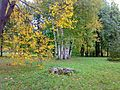 Екатерининский парк - panoramio (14).jpg