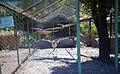 Київський зоопарк 01.jpg