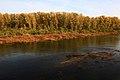 Отмель на Урале - panoramio.jpg