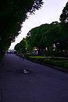 Парк имени Горького в Москве. Фото 26.jpg