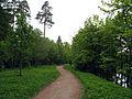 Приоратский парк. Гатчина 01.JPG