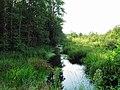 Речка un cours d'eau upīte - panoramio.jpg