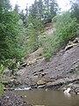 Скелі на р.Лужанка у верхній течії.jpg