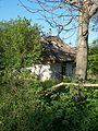 Старий будинок в Медведівці.jpg