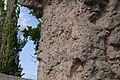 Стена-колумбарий с посвятительными надписями 04.JPG