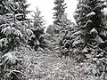 Фото путешествия по Беларуси 658.jpg