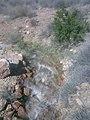 مياه من خزان تقليدي فتح القناة لمرور الماء و سقي الاشجار و المزروعات.jpg