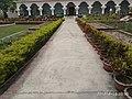 জাদুঘরের রাস্তা,বরেন্দ্র গবেষণা কেন্দ্র,রাজশাহী.jpg