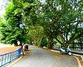 內灣國小/Neiwan Primary School - panoramio.jpg