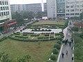 图书馆草坪 by liuzhidong - panoramio.jpg