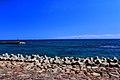大境漁港からの富山湾.jpg