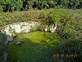 寿县八公山国家森林公园景色 - panoramio (45).jpg