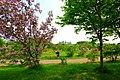 川下公園(Kawashimo Park) - panoramio (4).jpg