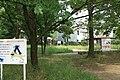 東高根森林公園 - panoramio (59).jpg