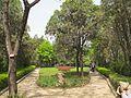 白园风光 - panoramio (1).jpg