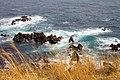 立待岬 Tachimachi Cape (139442241).jpeg