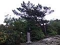 贵州-梵净山-薄刀岭 - panoramio.jpg