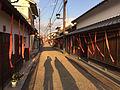 赤根色の街道.JPG