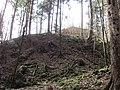 03 Waldstein Castle.JPG