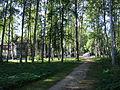 10022Средний парк.JPG