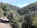 11330 Termes, France - panoramio (33).jpg