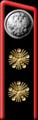 1904mid-petlp04.png