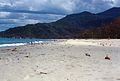 1969-Chủ nhật tại bãi biển Qui Hoa (9677346871).jpg