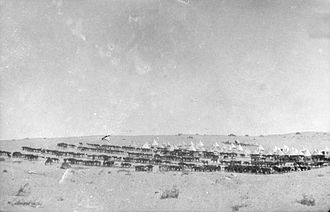 1st Royal New South Wales Lancers - 1st Light Horse Regiment in the Sinai Desert