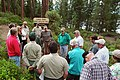 2005. Research plant pathologist Lew Roth (striped sweater) speaks at the Lewis Roth Dwarf Mistletoe Trail dedication. North Twin Lake, Deschutes National Forest, Oregon. (24732204777).jpg