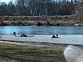 2007Landschaftsschutzgebiet Isarauen14.jpg