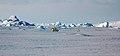 2007 Snow-Hill-Island Luyten-De-Hauwere-Emperor-Penguin-25.jpg