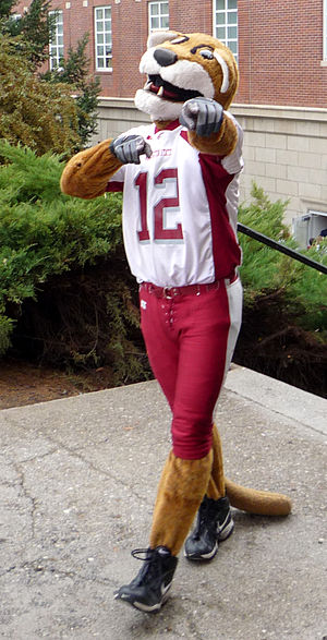 Butch T. Cougar, mascot of Washington State Un...