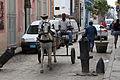 2012-Havanna Pferdegespann anagoria.JPG