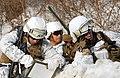 2013.2.7 한미 해병대 설한지훈련 Rep.of Korea & U.S Marine Corps Combined Exercises (8468051056).jpg