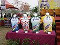 2014年國際自由車環台公路大賽獎項車衣.JPG