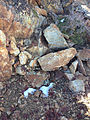 2014-10-09 10 49 57 Patches of snow on the summit of Granite Peak in Humboldt County, Nevada.JPG