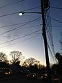 2014-12-26 16 57 50 Mercury vapor street light just after turning on for the night on Terrace Boulevard in Ewing, New Jersey.JPG
