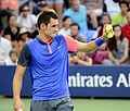 2014 US Open (Tennis) - Tournament - Bernard Tomic (15140701545).jpg