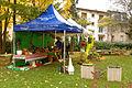 2015-10-17 11-32-38 marche-plantes-belfort.jpg
