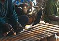 2015.07-431-052ap2 music(bara with sékèsékè,balafon) Bobo-Dioulasso,BF sun05jul2015-1638h.jpg