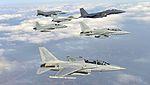 2015.2 공군 소링 이글 훈련 Soaring Eagle of ROK AirForce (16091270163).jpg