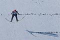 20150201 1216 Skispringen Hinzenbach 8111.jpg