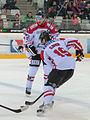 20150207 1818 Ice Hockey AUT SVK 9770.jpg