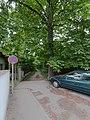 20150627 Rosskastanie Perchtoldsdorf 8000.jpg