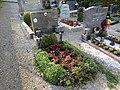 2017-10-18 (350) Friedhof Plankenstein.jpg