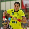 20170613 Handball AUT-ROU 8886.jpg